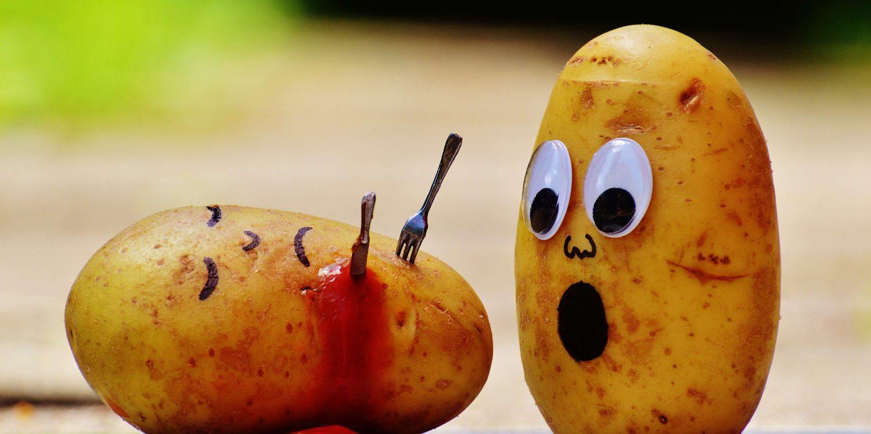 Tomato Potato - Bild: CC0 pixabay